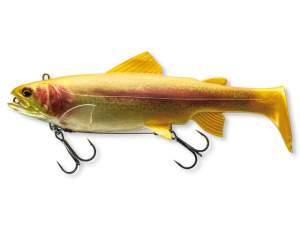 Daiwa Prorex Live Trout Swimbait 180DF live gold trout 18cm