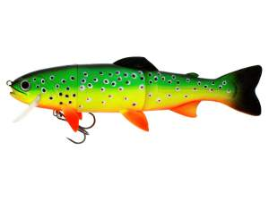 Westin Tommy the Trout Crazy Firetiger 25cm schwimmend